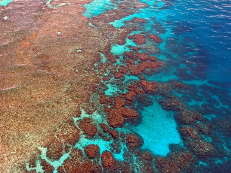 great-barrier-reef-261726_1920